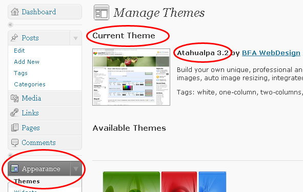 screenshot of wordpress manage themes menu