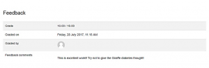 Screenshot of Feedback section on Moodle Assignment page